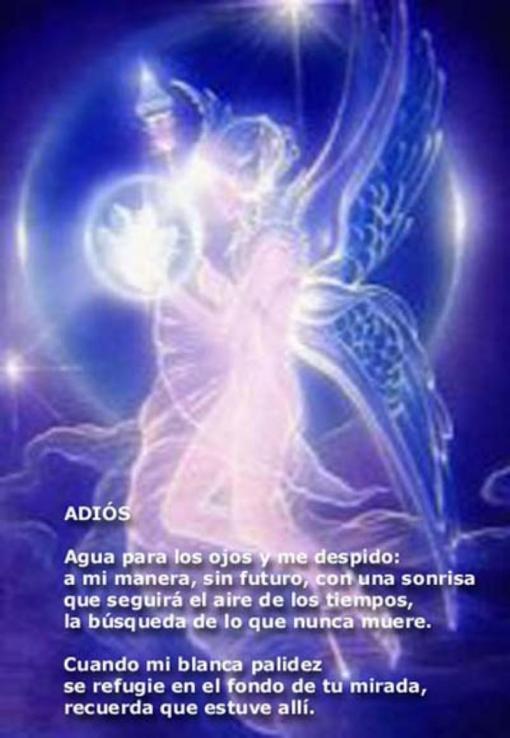 001adios-victoriapereira-lia.com