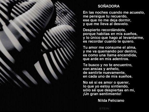 Nilda Felliciano-001-Soñadora