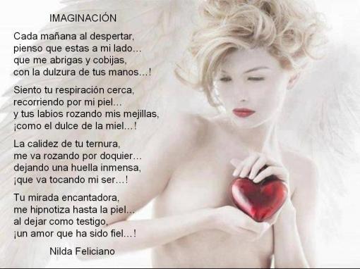 Nilda Felliciano-002-Imaginacion